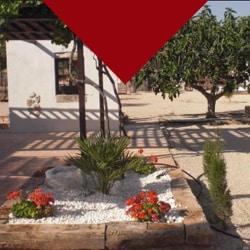 Casa-Rural-el-Olivar-de-las-Pepinas