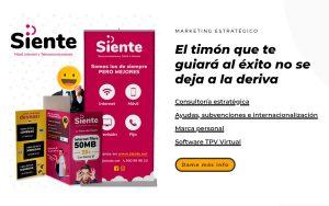 2VM Agencia Marketing Murcia